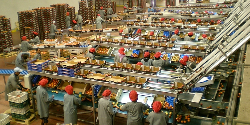 Salon alimentaria l agroalimentaire marocain la - Salon agroalimentaire ...