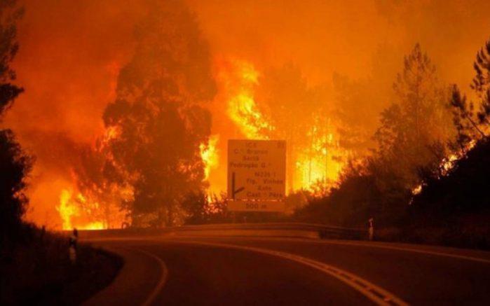 Un feu de forêt fait 19 morts et plusieurs blessés au Portugal