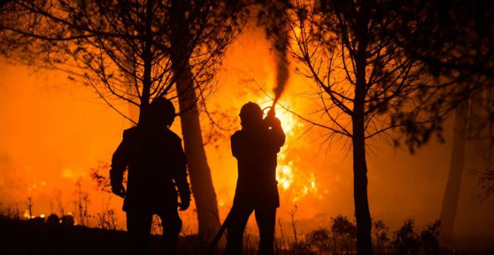 Un feu de forêt parcourt 330 hectares près de Hyères — Var