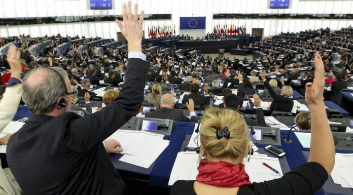 Vidéo. Le Parlement européen s'oppose à la pêche électrique